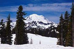 Snowcapped zet Regenachtiger op Royalty-vrije Stock Afbeeldingen