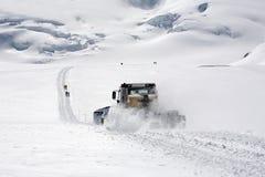 snowcat 库存照片