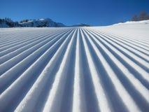 Snowcat-Kordsamt Stockbild