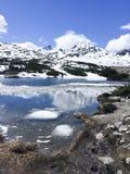 Snowcovered горы стоковые изображения rf
