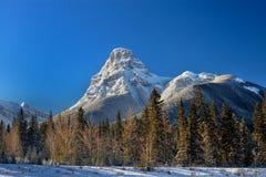 Snowcovered berg i kanadensiska steniga berg Banff Alberta Arkivfoton