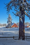 Snowcovered farm with a red barn and trees Royalty Free Stock Image
