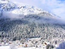 Snowcovered grantrees på lutningarna av franska Alps Arkivbild