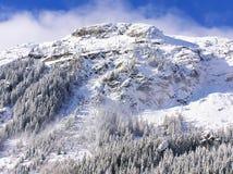Snowcovered Tannenbäume auf den Steigungen von französischen Alpen Lizenzfreies Stockfoto