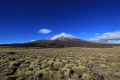Snowcovered Volcano Tromen, Argentina stock images