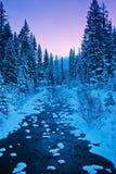 Snowday 免版税图库摄影