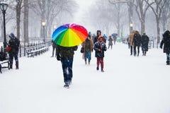 Snowday no Central Park Fotografia de Stock Royalty Free