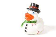 Snowdoll duck Royalty Free Stock Image