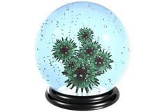 Snowdome virus Royalty Free Stock Images