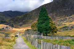 Snowdonia landscape. River flows down the mountain. Royalty Free Stock Photo