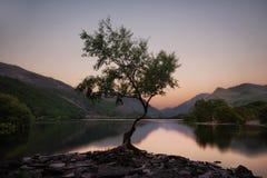 Snowdonia Nationaal Park in Noordelijk die Wales in Juni 2018 wordt genomen Stock Afbeeldingen