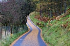 Snowdonia National Park. Walking around Capel Curig on a wet Autumn day Snowdonia National Park Wales Royalty Free Stock Image