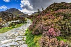 Free Snowdonia National Park Stock Photos - 67544043