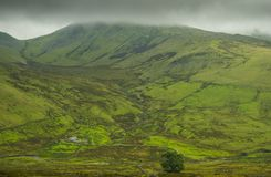 Snowdonia National Park, North Wales. stock image