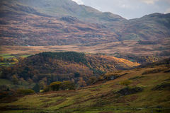 Snowdonia. View Snowdonia forrests during Autumn Stock Images