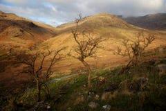 Snowdonia Views Stock Image