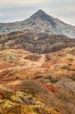 在Snowdonia附近的看法 库存图片