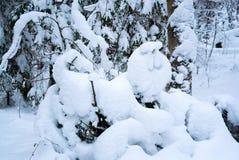 Snowdrift με μορφή ενός λιονταριού 33c ural χειμώνας θερμοκρασίας της Ρωσίας τοπίων Ιανουαρίου στοκ εικόνες