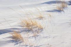 Snowdrift με τη χλόη στοκ φωτογραφία
