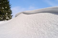 Snowdrift. In bright winter morning with blue sky and out of focus pine tree Stock Photography