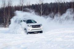 snowdrift Lizenzfreie Stockfotografie
