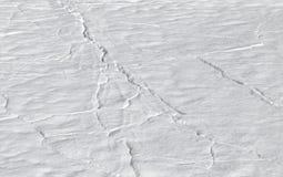 Snowdrift no gelo com clefts fotografia de stock
