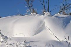 Snowdrifts, μπλε ουρανός και οι Μπους Στοκ εικόνα με δικαίωμα ελεύθερης χρήσης