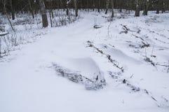 snowdrifts Στοκ Εικόνες