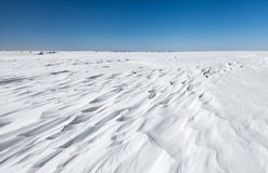 Snowdrifts Royalty Free Stock Image