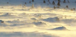 snowdrifts Arkivfoto