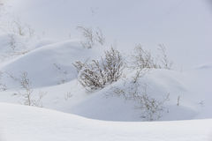 Snowdrifts Royalty Free Stock Photography