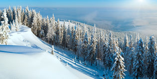 Snowdrifts winter panorama landscape Stock Image