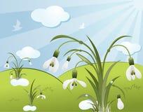 snowdro цветка предпосылки бесплатная иллюстрация