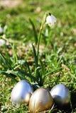 Snowdrop лужка пасхального яйца Стоковые Изображения RF