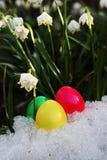 Snowdrop луга пасхального яйца Стоковое фото RF