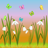 Snowdrop and butterflies illustration Royalty Free Stock Photos