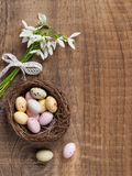 Snowdrop with chocolate egg Stock Images