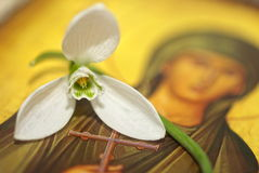 Snowdrop on a christian icon Royalty Free Stock Photos