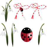 Snowdrop con la baratija y el ladybug Fotografía de archivo libre de regalías