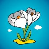 Snowdrop de la primavera del vector Fotografía de archivo