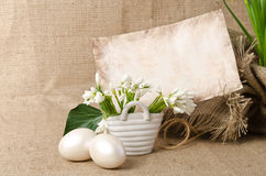 Snowdrop with eggs for easter Royalty Free Stock Photo