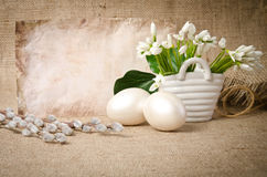 Snowdrop with eggs for easter Royalty Free Stock Photography