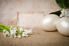 Snowdrop with eggs for easter Stock Images