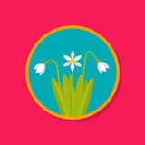 Snowdrop flat. Snowdrop spring flower. March, April. Snowdrop day. Flat design Royalty Free Stock Photos