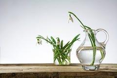 Snowdrop florece en los floreros de cristal en la madera rústica contra un brigh Fotos de archivo