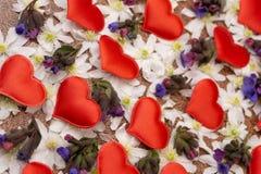 Snowdrop florece poco el corazón en fondo de madera de la textura Flores blancas del snowdrop en forma del corazón en la tabla de foto de archivo