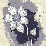 Snowdrop flower on Crumpled paper background. Royalty Free Stock Photography