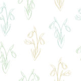 Snowdrop flower graphic color seamless pattern sketch illustration Stock Images