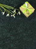 Snowdrop flowers and giftbox on Verde Guatemala marble surface Royalty Free Stock Photography
