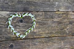 HEART ON WOODEN BACKGROUND. SNOWDROP FLOWERS IN THE SHAPE OF A HEART ON AN OLD TABLE Royalty Free Stock Photo
